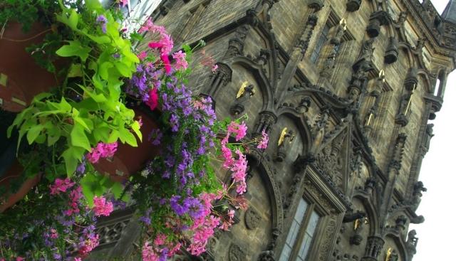 Turnul Pulberariei, Praga, Orasul Nou