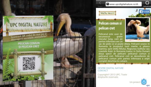 qr code, digital zoo