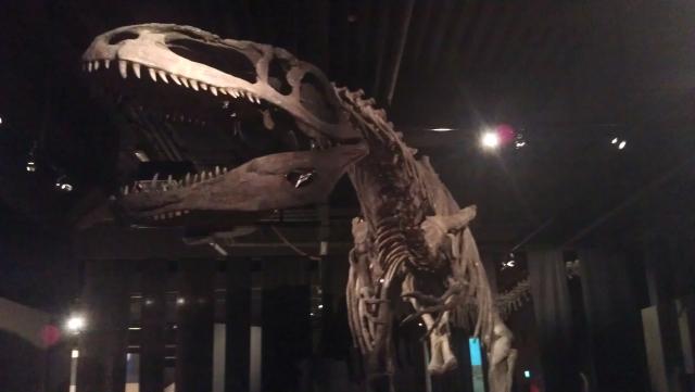 Cretacic, t-Rex