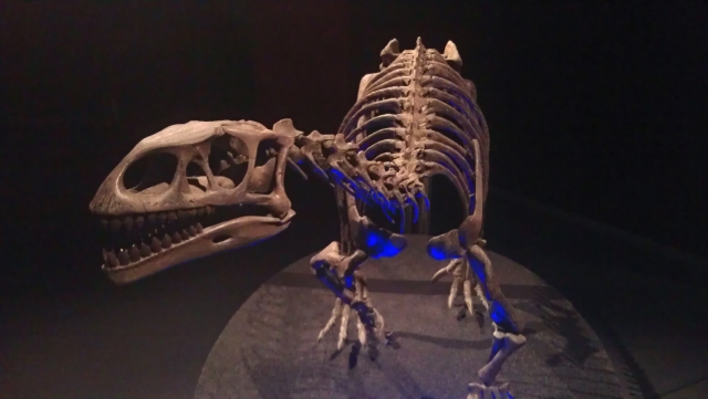 Jurasic, dinozauri