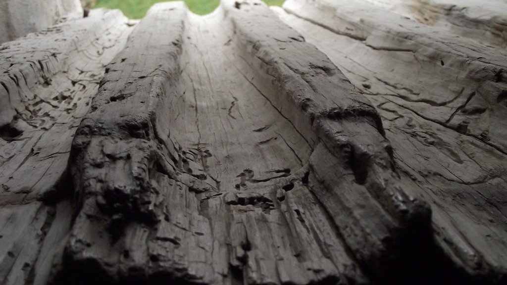 Cetate taraneasca, prejmer, transilvania