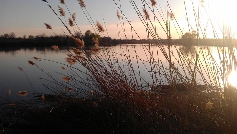 Lacul Pasarea, Lacul Tunari, Tunari, Judetul Ilfov