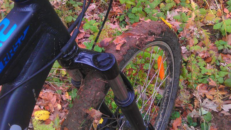 adevaratii veloprieteni, toamna