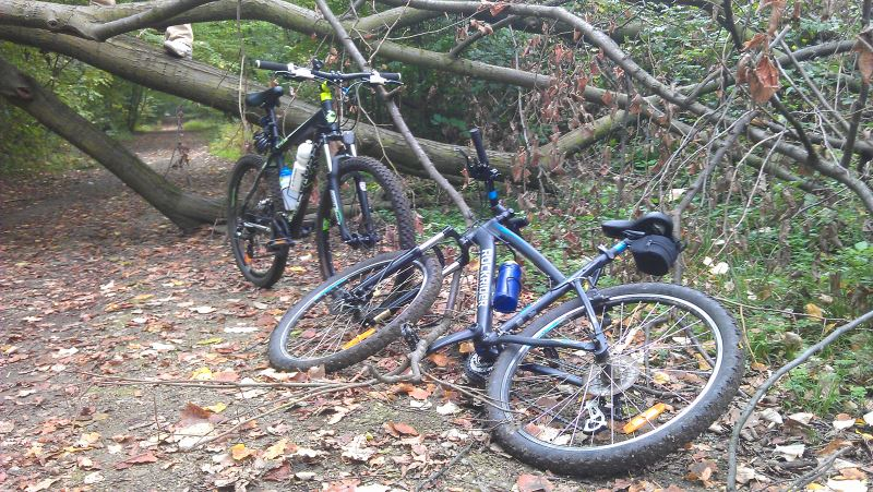 Padurea Baneasa, MTB, bicicleta