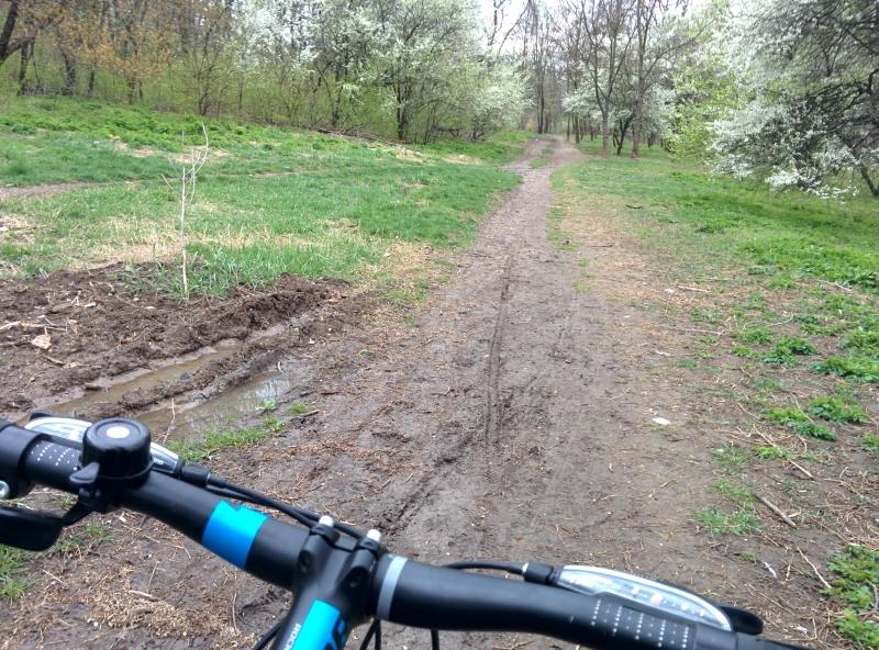 Parc Herastrau, bicicleta