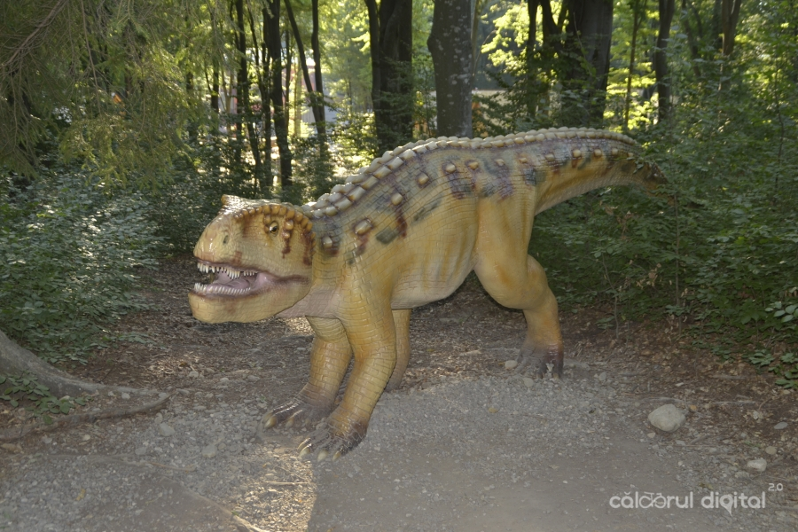 Dino-Parc-Rasnov-(17)