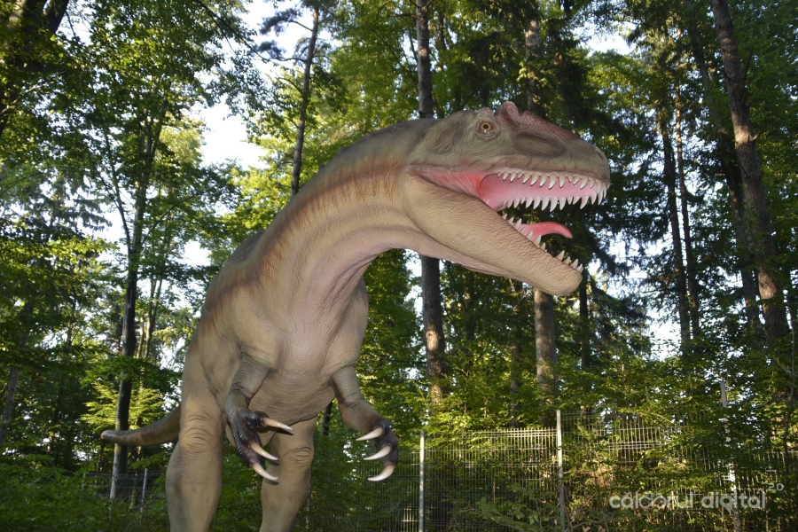 Dino-Parc-Rasnov-(18)-Allosaurus