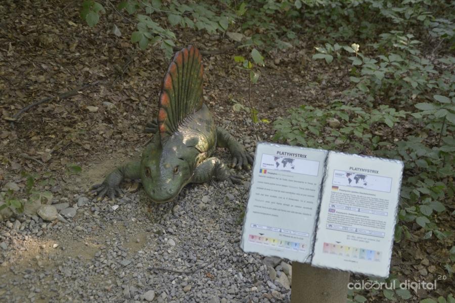 Dino-Parc-Rasnov-(3)-Platyhystrix