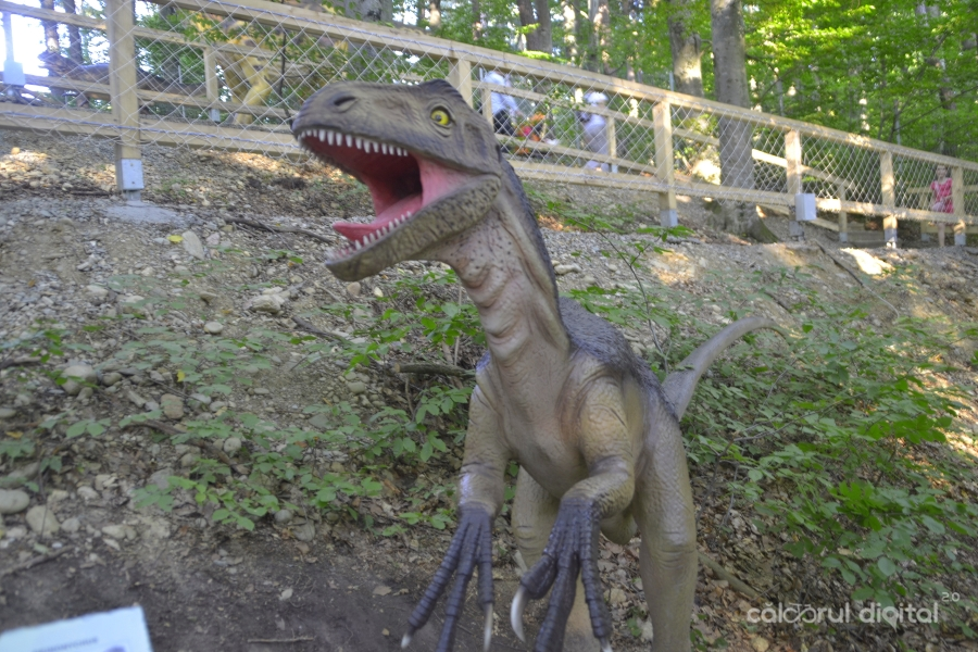 Dino-Parc-Rasnov-(31)