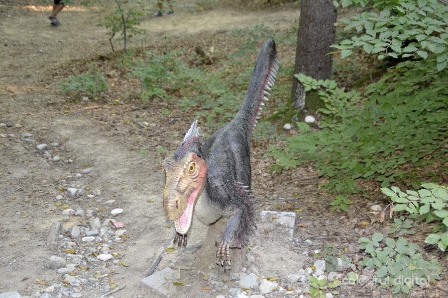Dino-Parc-Rasnov-(35)