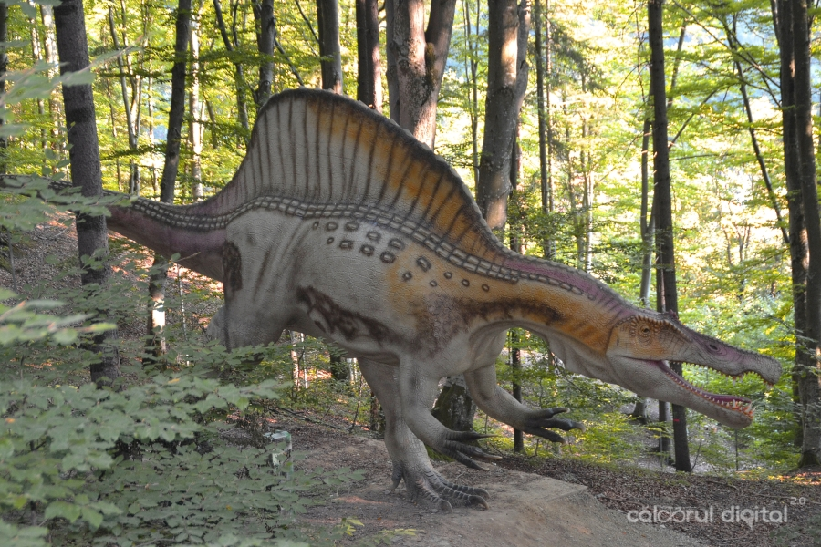 Dino-Parc-Rasnov-(36)