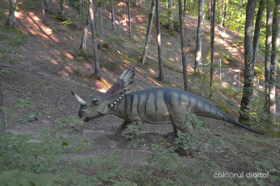 Dino-Parc-Rasnov-(37)