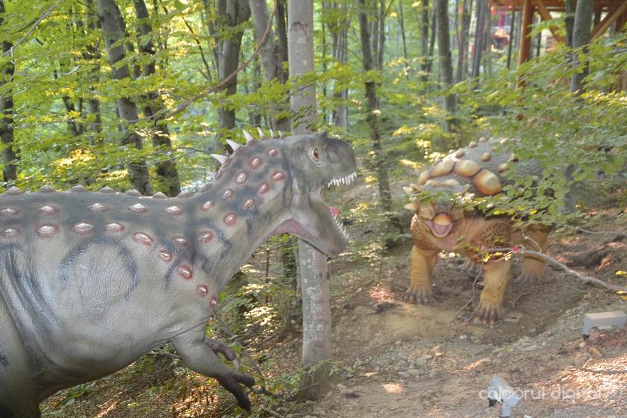 Dino-Parc-Rasnov-(39)