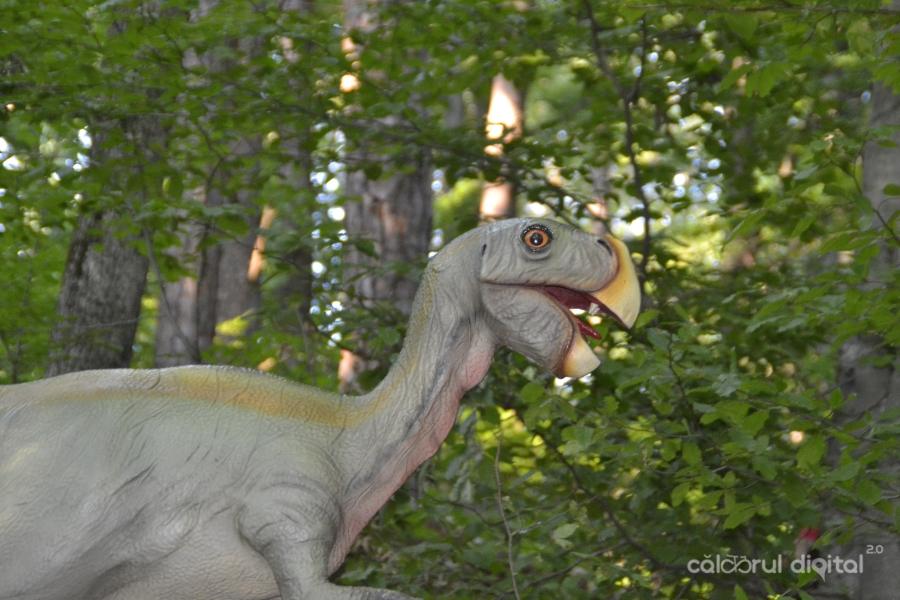 Dino-Parc-Rasnov-(41)-Oviraptor