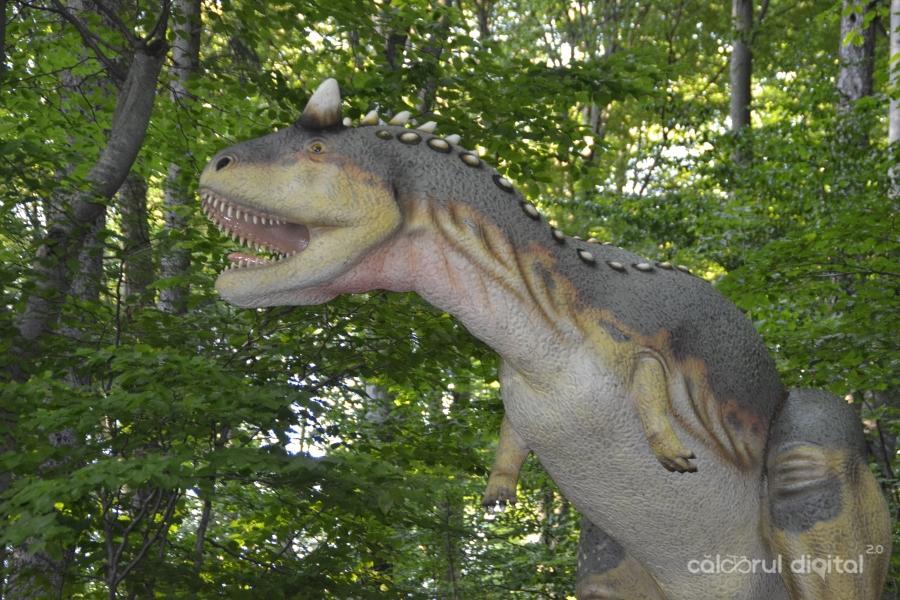 Dino-Parc-Rasnov-(43)-Carnotaurus
