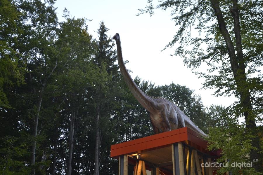 Dino-Parc-Rasnov-(49)