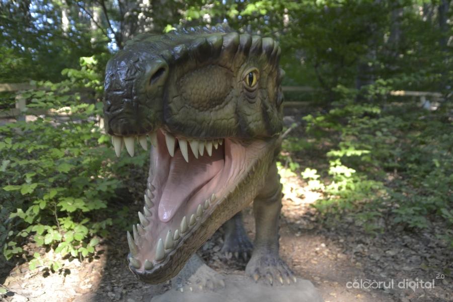 Dino-Parc-Rasnov-(6)