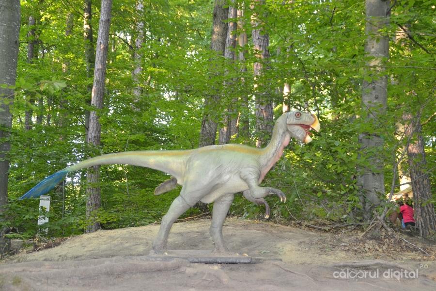 Dino-Parc-Rasnov(40)-Oviraptor