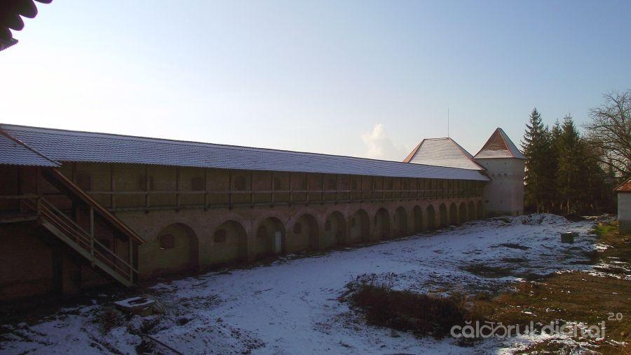 targu-mures-1-decembrie (2)