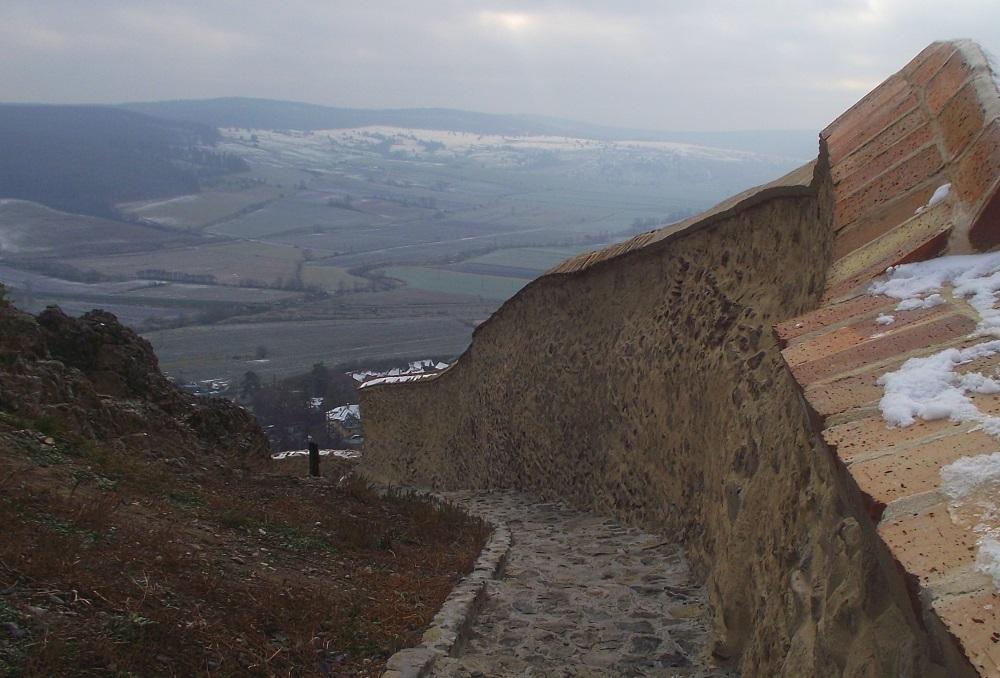 Cetatea-Rupea-Dealul-Cohalmului (17)
