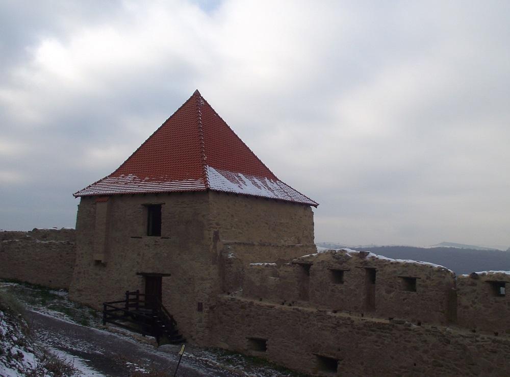 Cetatea-Rupea-Dealul-Cohalmului (8)