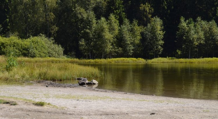 Lacul Sfânta Ana, Jud. Harghita, lac în crater vulcanic