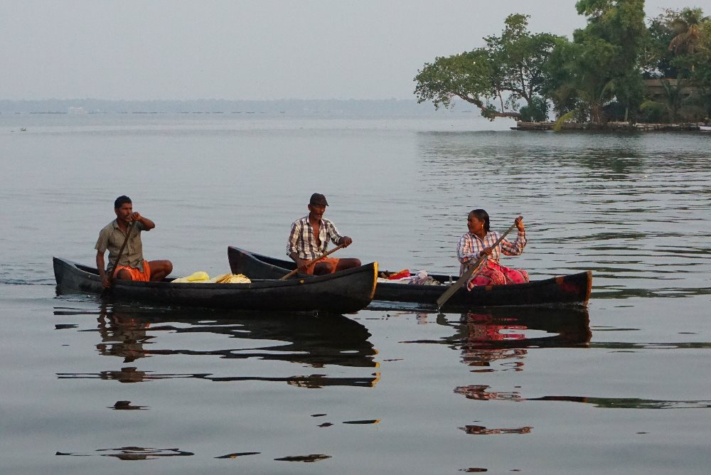 kerala, backwaters, boats, water