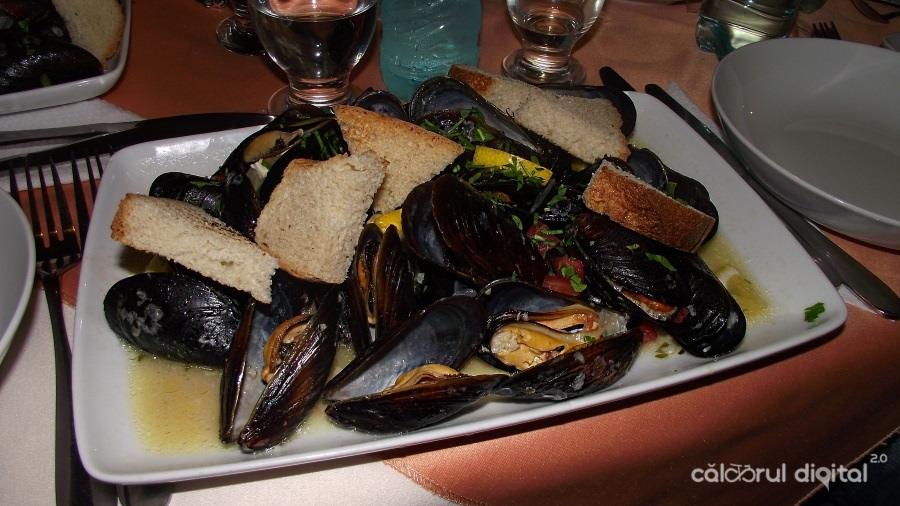 scoici, marea neagra, hotel delta, restaurant