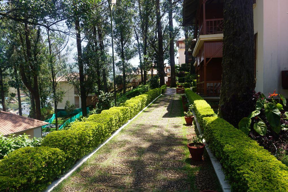 Tea County, Munnar, Kerala