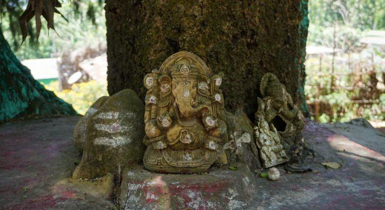 kerala, zei, ecoturism, altar