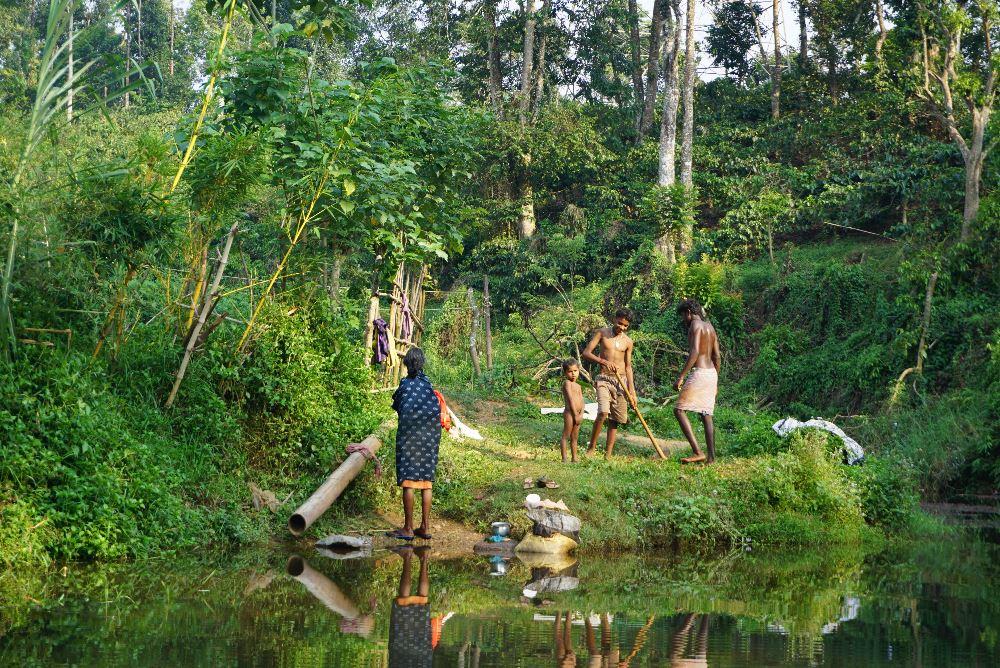 kerala, ecoturism, vithiry, bamboo rafting