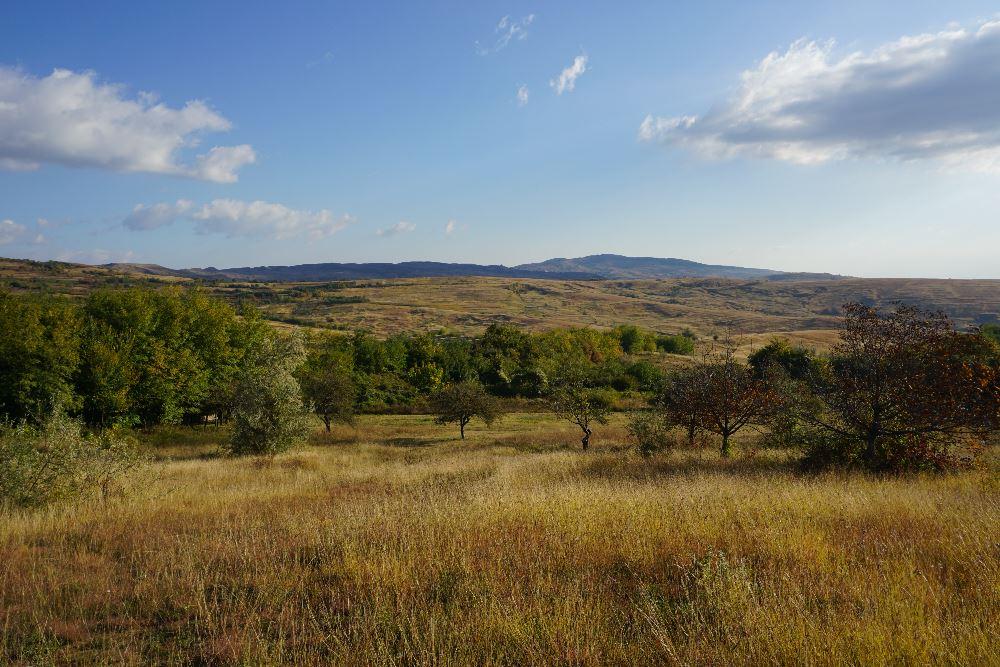 Ferma Dacilor, Tohani, peisaj, dealuri, podgorii